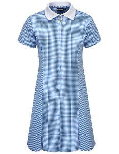 Blue/White Gingham Dress (Plain/No Logo)