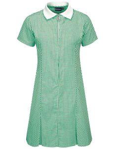 Green/White Gingham Dress